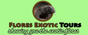 Flores_Exotic_Tours_Logo